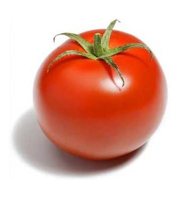 Graines de Tomates Classique