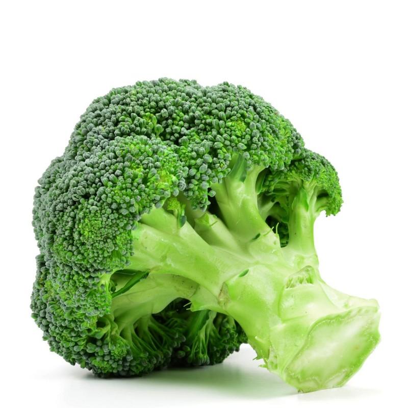 graines de choux brocolis