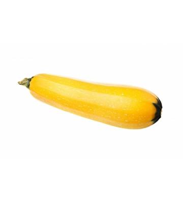Graines de courgettes jaunes (Atena Polka)